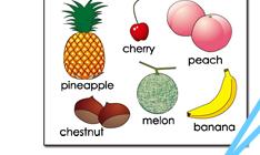ポスター fruite 果物
