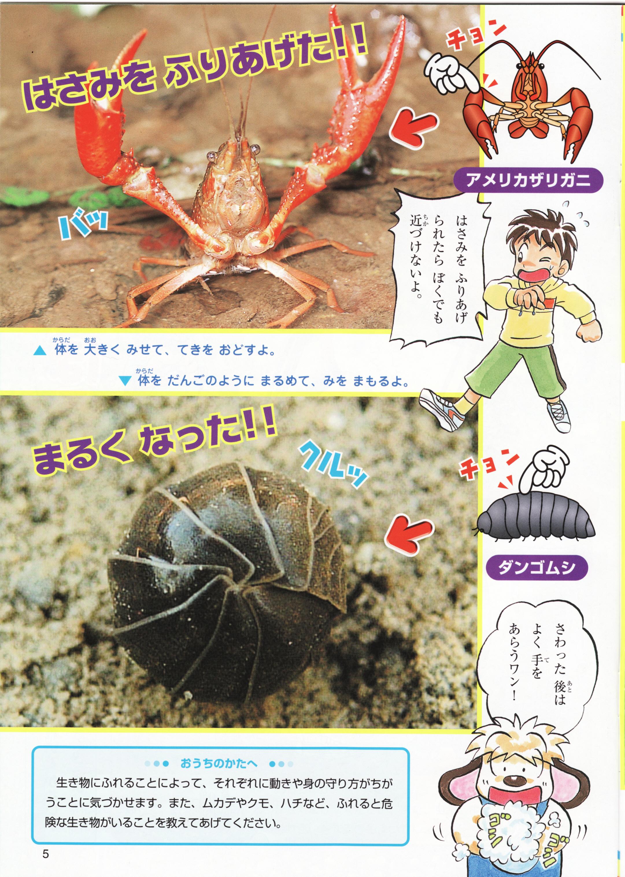 小学ポピー1年生あそびんぴっく(こども情報誌)内容