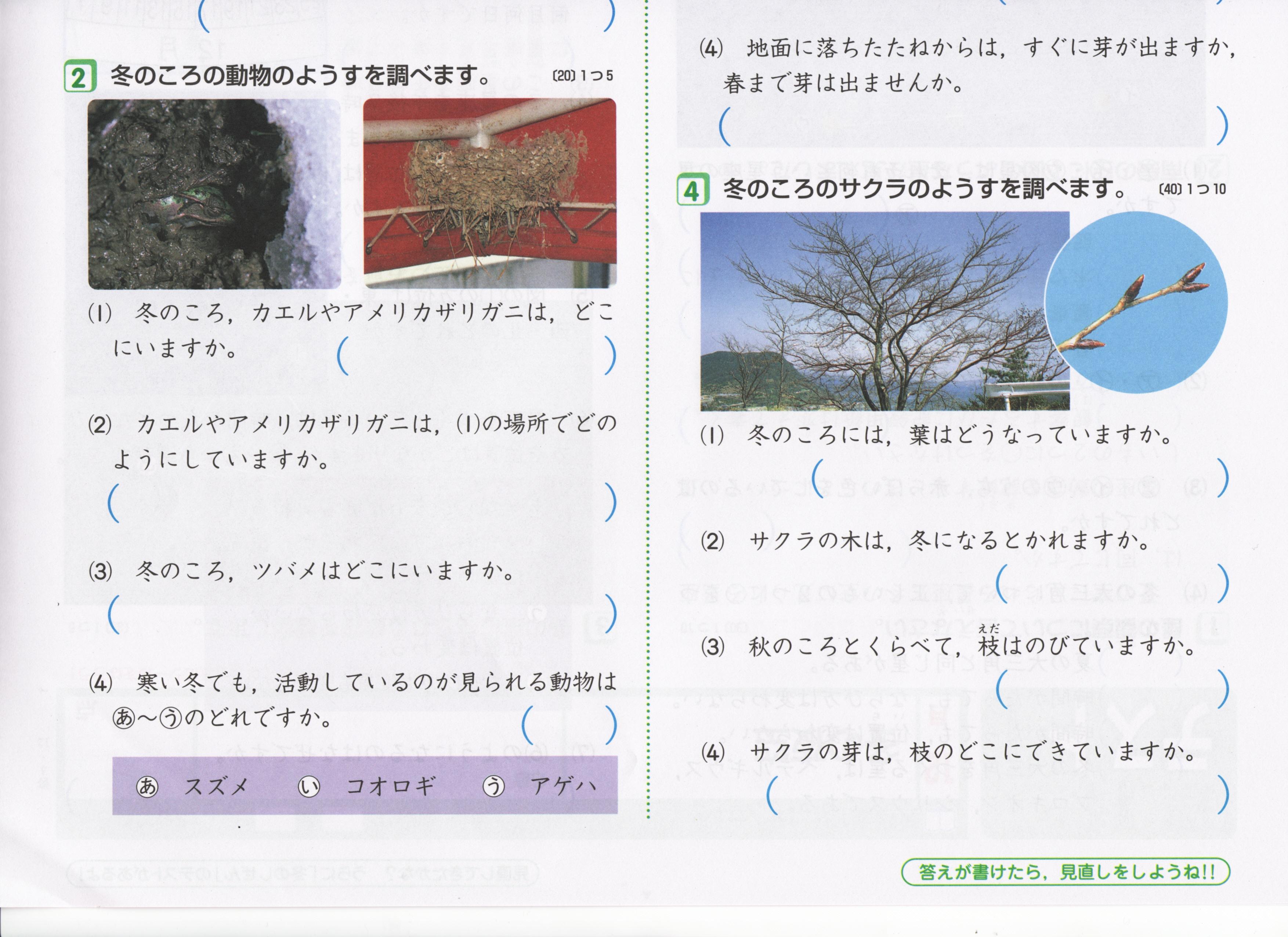 小4ポピー理科(啓林)単元テスト内容